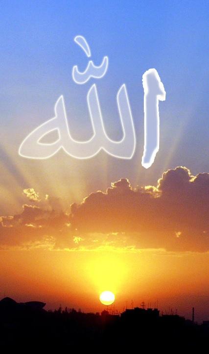 reve islam